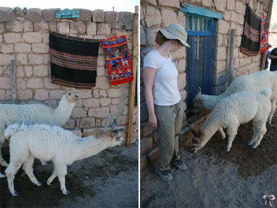 Dicas_Atacama_5