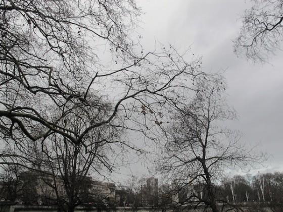 LuadeMel-Londres_03