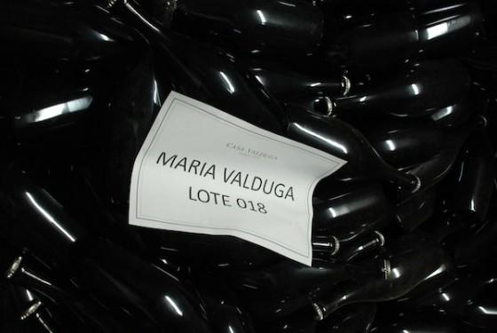 Casa-Valduga_25